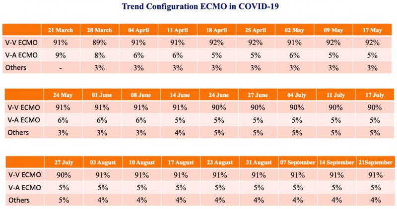 Trend-configuration-2021-02-18-summer